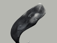 Movember Illustration 2019 - 04