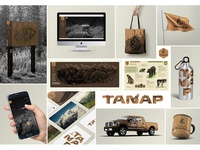 TANAP_visual identity
