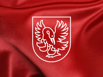 Trenčianska Turná_redesign identity re-branding arms coat village town visual brand logo redesign
