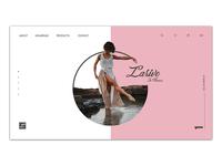 Larive Web Design