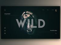Wild Web Design