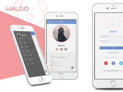 Waldo Mobile App Design