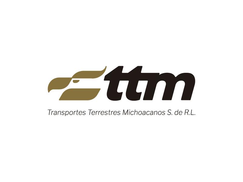 Transportes Terrestres Michoacanos design typography transportation logistics bird eagle mark branding symbol icon vector brand identity logo