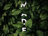 Madera Type Test 2