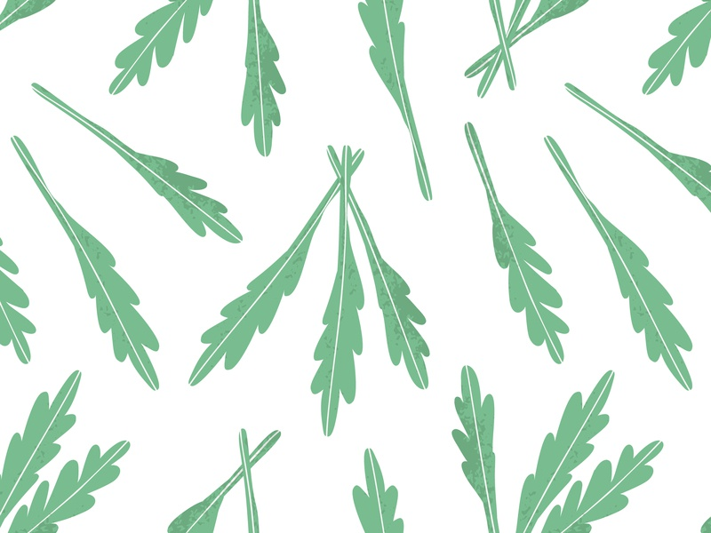 Arugula pattern leaves food green pattern design surface design design illustration texture fabric pattern arugula