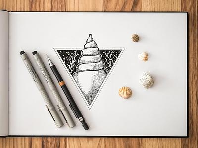 the shell inspiration blackandwhite shells sea ink pen sketchbook creative drawing illustration sketching