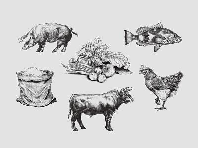 Illustration set for a restaurant in Tallahassee FL chicken vegetables grains pig cow fish animals livestock farm restaurant