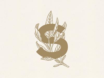 Sage illustration with type gold botanical restaurant sage