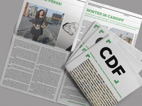 The CDF Issue 11