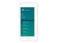 Mobile menu example