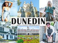 Free Dunedin Mobile & Desktop Lightroom Preset