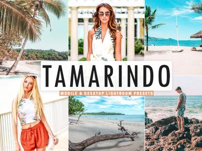 Free Tamarindo Mobile & Desktop Lightroom Presets minimalistic matte magazine lightroom light instagram insta hdr fresh film exclusive colorful color cinematic bright blog beautiful artistic art