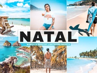 Free Natal Mobile & Desktop Lightroom Presets portrait photography retouch photo outdoor moody lightroom presets landscape hdr film fashion envato item effects effect colorful color grading color correction color cinematic blogger acr presets