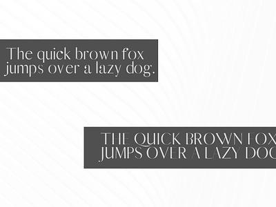 Free Yessica Sans Serif Font cute fonts hand-lettered fonts ttf stylish strict sophisticated sant-serif regular otf office neat modern minimalist light for print clean business book wedding fonts logo fonts