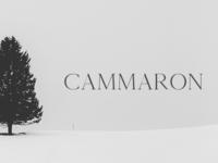 Free Cammron Serif Font