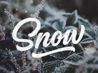 PDX Snow