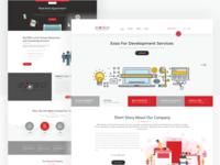 Digital Services Co. Agency Website