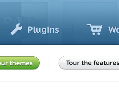 Themes UI themes tumblr wordpress blue website ui landing page button green white light icons glyphs design
