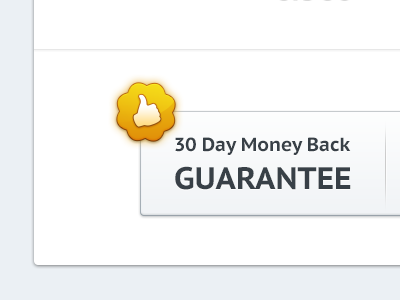 Thumbs up! website tumblr themes light web ui design gold yellow money back button thumbs guarantee like up