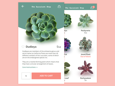 Daily UI 012 - E-commerce (Single Item) shopping mobile product shop plant succulent dailyui