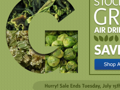 Going Green! email email campaign natural food e-commerce