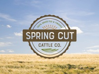 Spring Cut Cattle Co. Logo