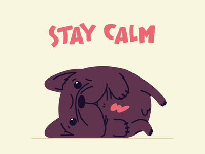 Stay Calm coronavirus covid19 corona animated animal character drawing loop french bulldog dog frenchie wfh stay safe stay home stayhome animation 2d animation hand drawn illustrator illustration