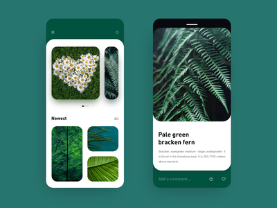Green plant encyclopedia green plant green plants mobile design ux ui app