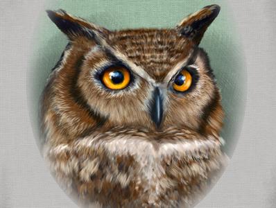 Mr. Hub the Owl
