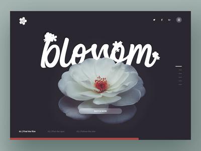 Blossom UI dark red white photoshop sketch type flower design ux interface ui app