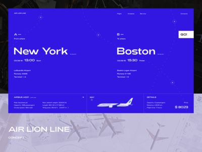 AIR LION LINE