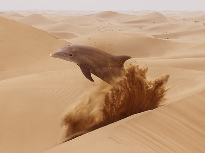 Lost Dolphin dolphin desert visual design surrealism
