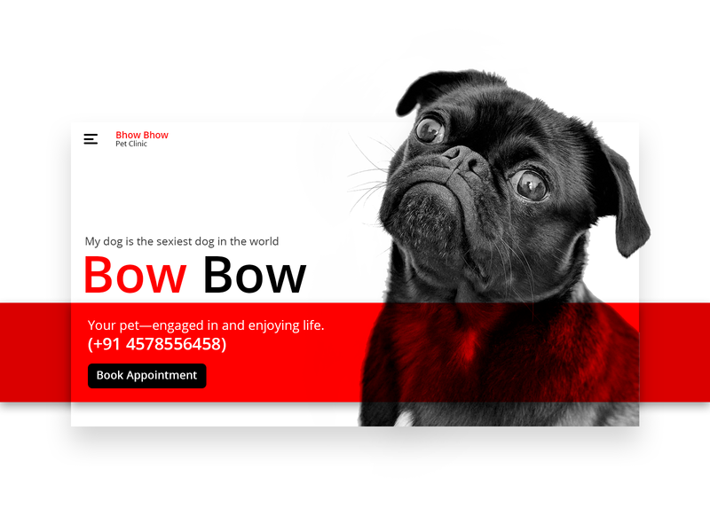 Bow Bow ux ui uiux user interface user experience animal loveforanimal dog pets book appointment clinic petclenic unique black white red pet