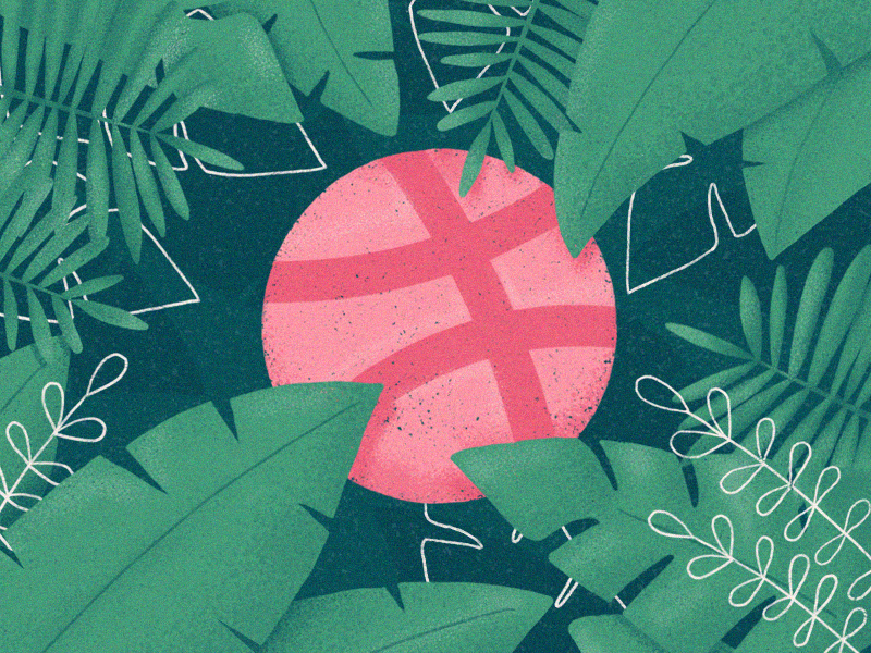 Hello dribbble dribbble debut thank you plant jungle texture illustration