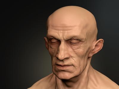 Man's Head sculpting modelling 3d zbrush