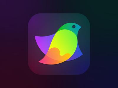 Amadine app icon app application icon bird icon logo design graphics design vector amadine