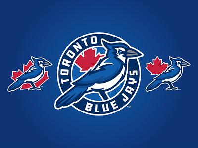 Toronto Blue Jays Concept Logo mapleleaf bird blue jays branding roundel badge mlb design baseball logo sports