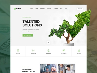 Litho - Elementor WordPress Theme - Finance woocommerce