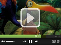 Mini Video Player