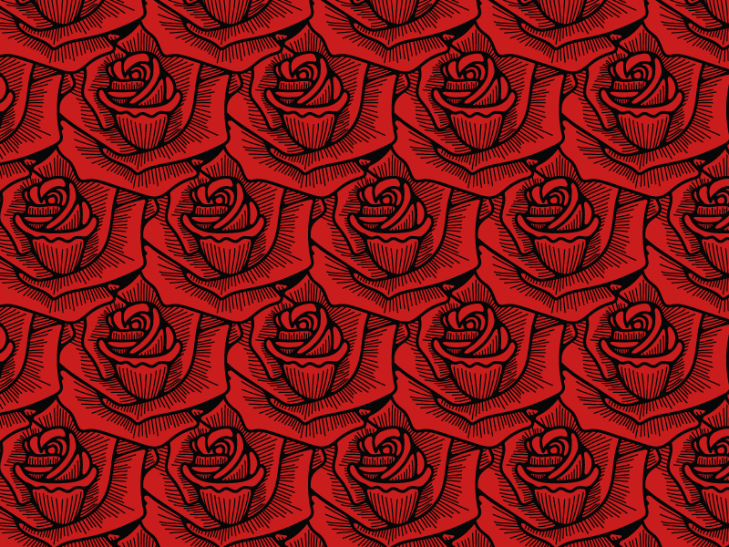 Roses graphic design pattern handdrawn rose chicago hand drawn illustration