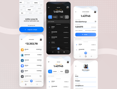 Digilirapay - Crypto Wallet App Design flat blockchain coin interface app ux finance mobile banking design sketch ui payment bitcoin wallet wallet money bitcoin exchange cryptocurrency crypto wallet