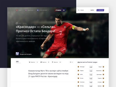 Stavka TV: Article page