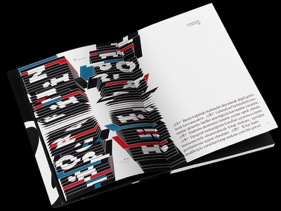 TYPOGRAPHIC WRITINGS book design graphic design typographic illustrations text typo type typography book illustrations