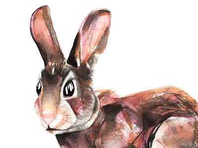 Easter Bunny nature art illustration handmade handpainted watercolour rabbit bunny easter