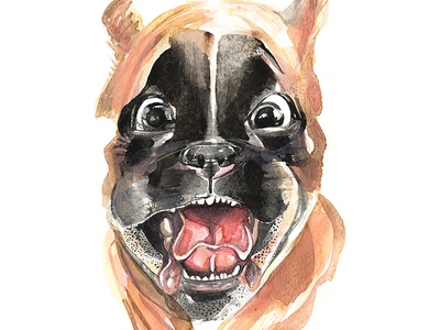 Boxer Puppy painting motion run glee watercolour happy joy dog puppy boxer