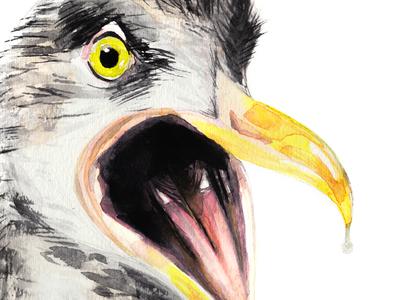 Seagull Drool caw handmade paint watercolour drool seagull
