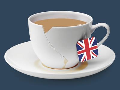 Brexit print brexit illustration book jacket book cover