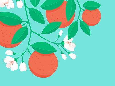 Orange blossom - oranges blossom orange light sun illustrator shadow colour vector illustration bright plant fruit leaves pink green leaf nature branch tree