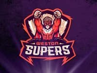 Weston Supers logo