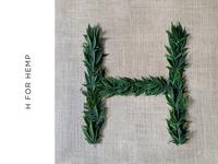 H for Hemp